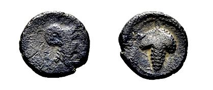 APULIA ARPI Hannibal           Æ15-16 Helmeted Athena grapes HN Italy 650 RARE